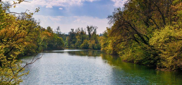 river, mirroring, water